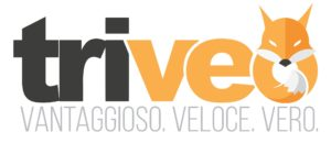 servizio clienti Triveo